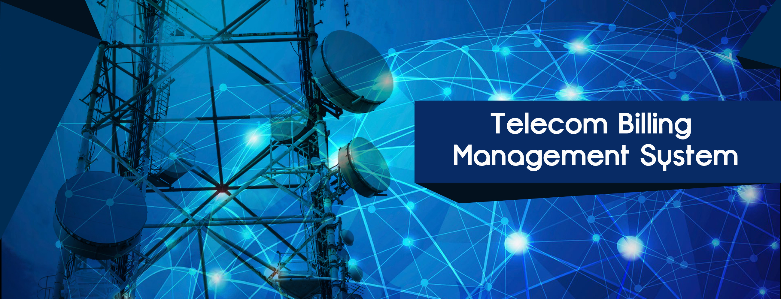Telecom Billing Management System